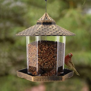 best bird feeders - Twinkle Star Wild Bird Feeder