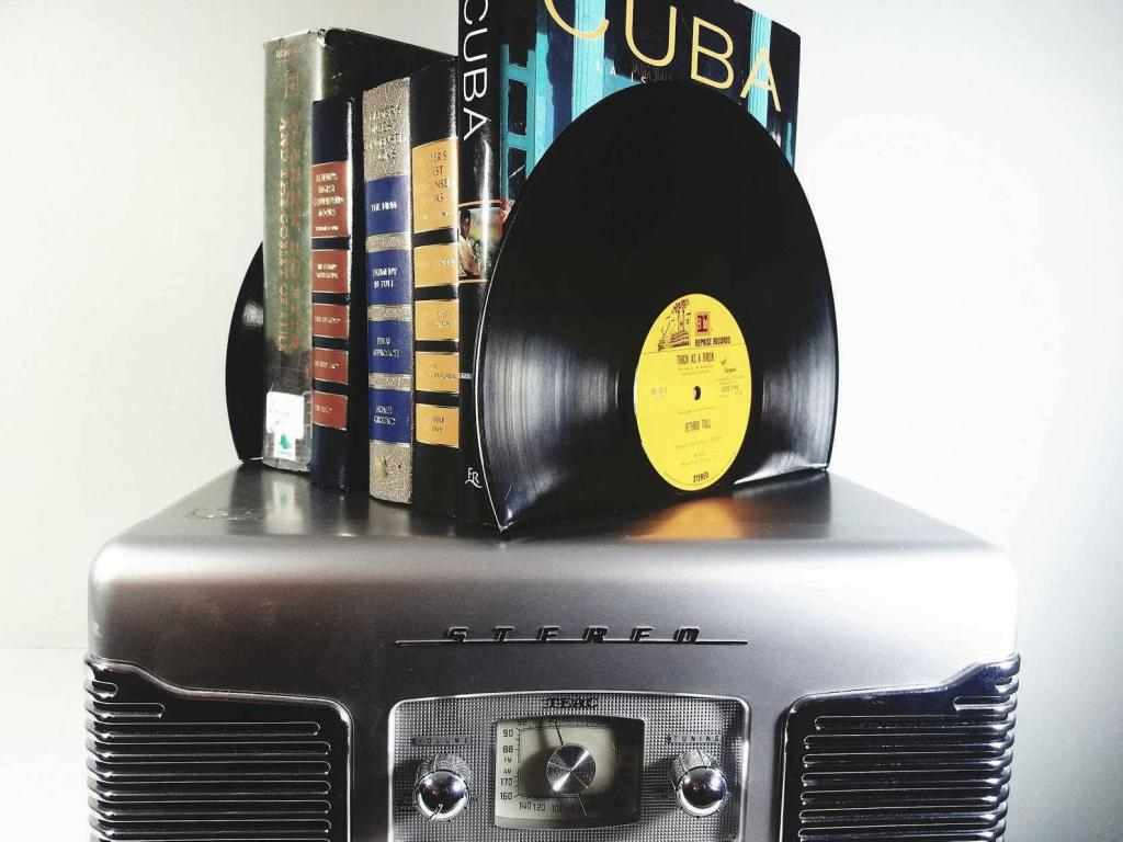 Vinyl Record Bookends by DIY Mike