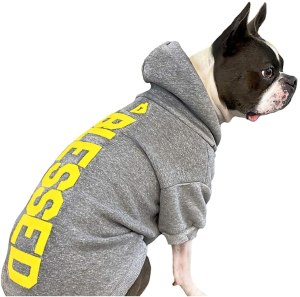 House Dogge Hoodie, gifts for dog lovers, Oprah's favorite things 2020
