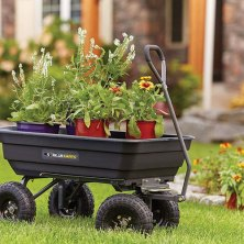 no green thumb? not a problem with these gardening tools in your shed
