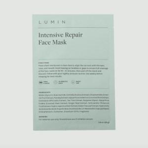 Repairing Face Mask