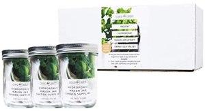 Hydroponic Mason Jar Garden Cocktail Set - oprah's favorite things of 2020
