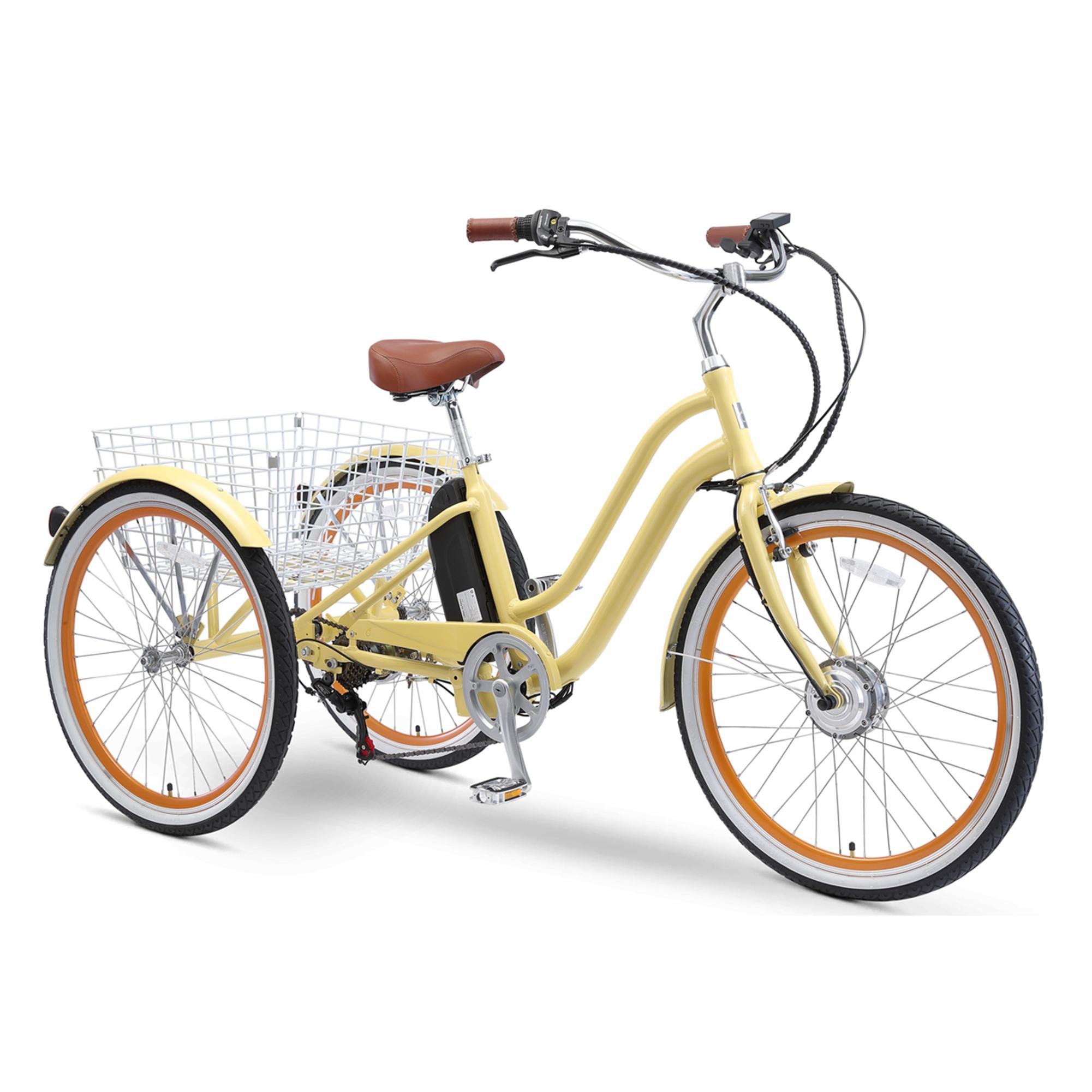 EVRYjourney 250W Tricycle