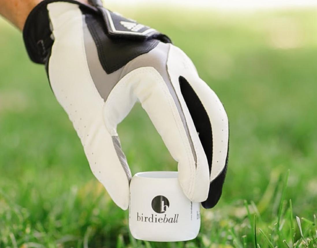 birdieball golf training aids for off season