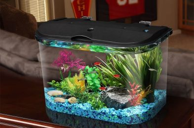 best-betta-fish-tank-amazon