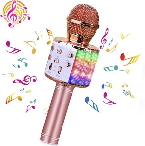 best karaoke machine BlueFire Karaoke Wireless Microphone