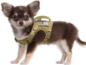 SALFSE Tactical Dog Training Harness