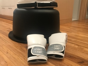 FightCamp punching bag base, FightCamp review