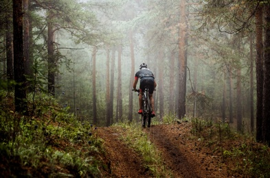 mountainbiker rides a bicycle along a forest trail