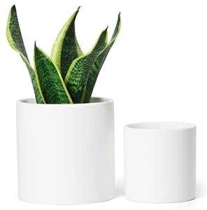 Greenaholics Ceramic white pots