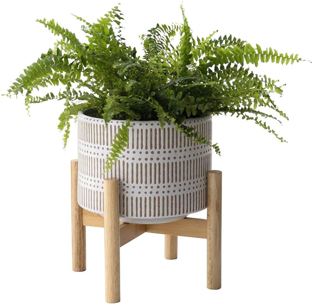 La Jolie Muse Ceramic Plant Pot
