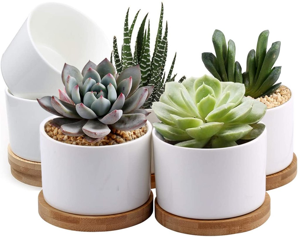 ZOUTOG White Mini Ceramic Flower Planter Pot with Bamboo Tray, Pack of 6