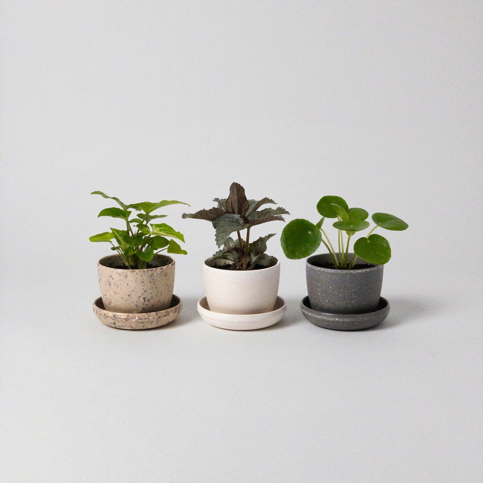 mini planters, best planter pots