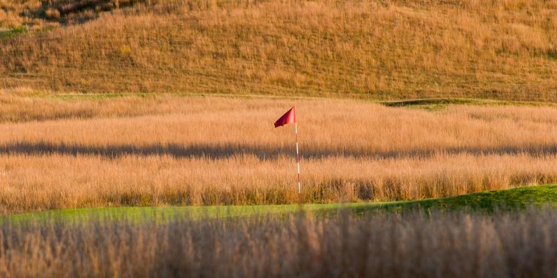 shinecock golf course