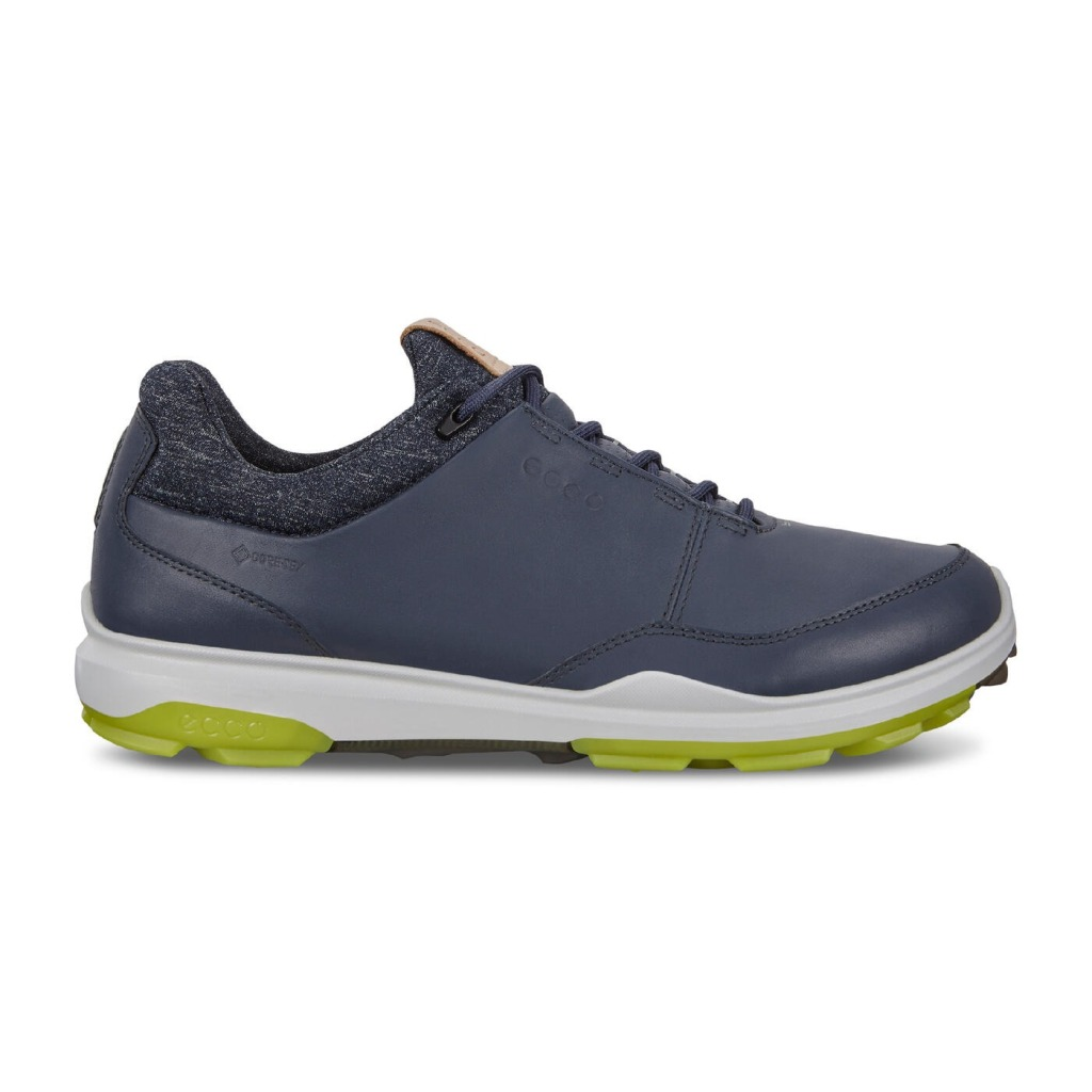 ECCO Men's Biom Hybrid 3 Gore-Tex Golf Shoe, Best Spikeless Golf Shoes