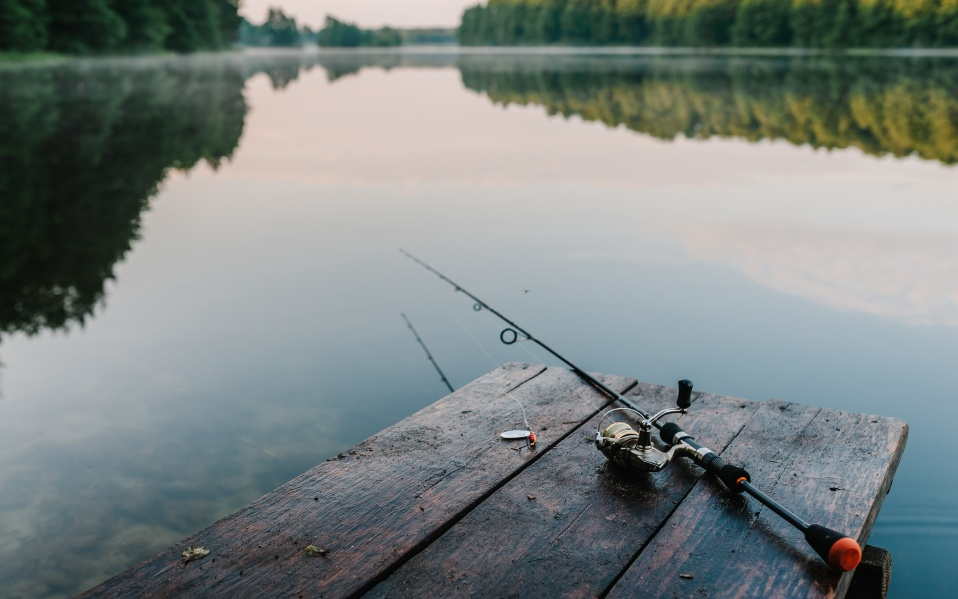 best Fishing poles