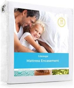 best bed bugs spray linenspa mattress encasement