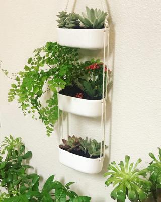 Mkono hanging planter