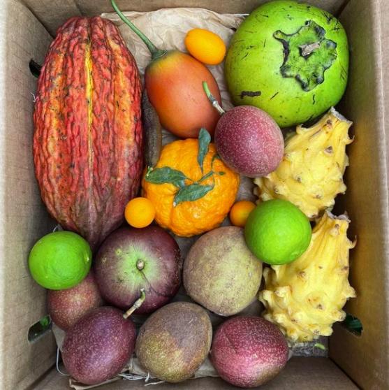 miami fruit, best stoner snacks