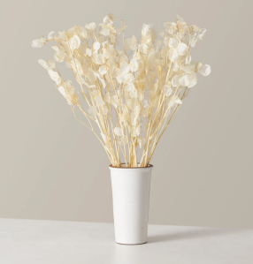 dried lunaria flowers, best gifts for mom