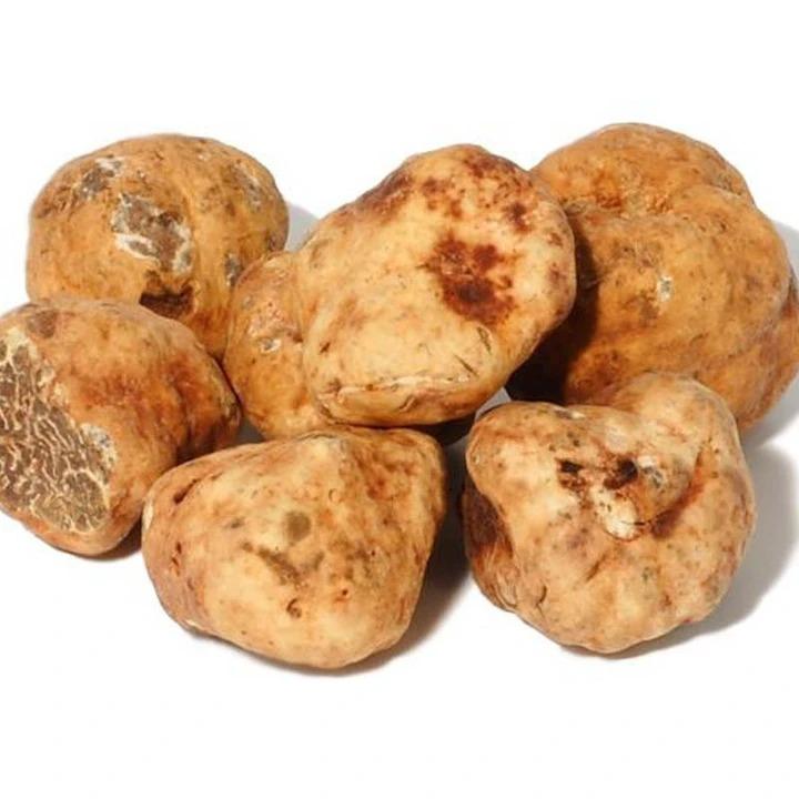 Fresh Bianchetti Truffles 2oz, Best truffle oils