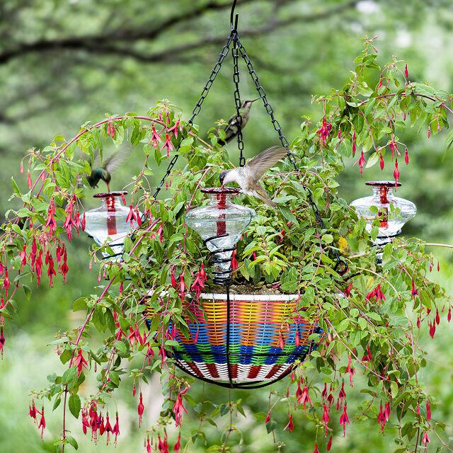 hanging basket hummingbird feeder, gifts for wife
