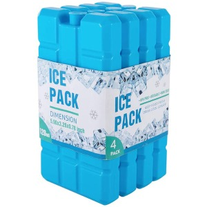 Generic Ice Pack for Lunch Box