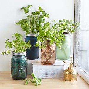 mason jar indoor herb garden, cheap Mother's Day gifts