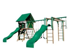 lifetime double slide deluxe swing set