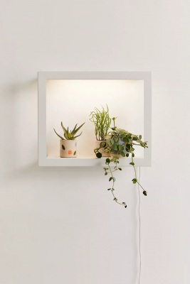 modern sprout growframe
