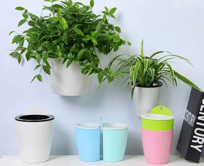 Self watering hanging pots