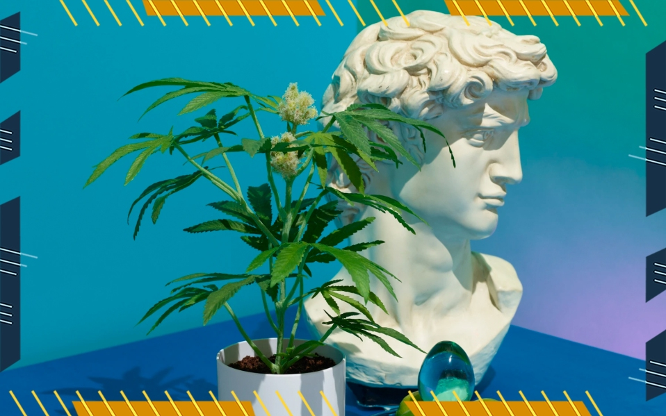 houseplant fake weed plants