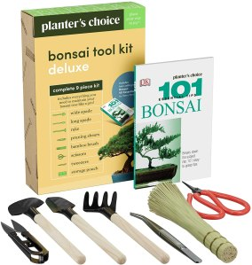 Bonsai tool kit, Bonsai tree kits
