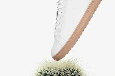CLAE-Bradley-cactus-unisex-sneaker