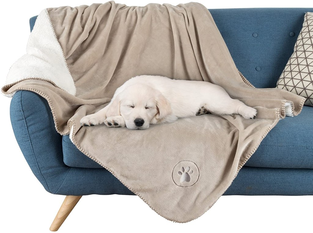couch covers for pets pet maker waterproof