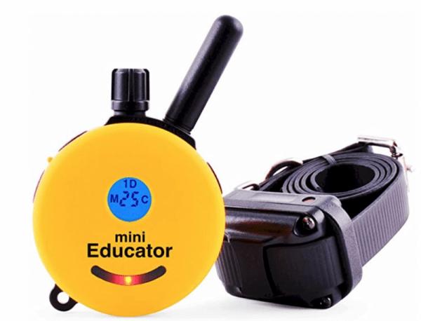 Educator E-Collar