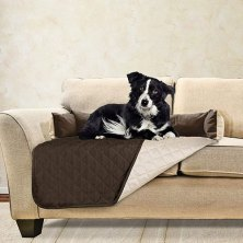 protect your upholstery from paws and puddles with one of the best couch covers for pets