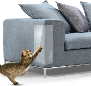 couch covers for pets in hand cat scratch