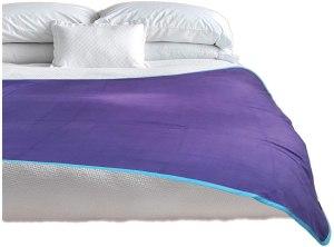 throws of passion waterproof blanket, sex blanket