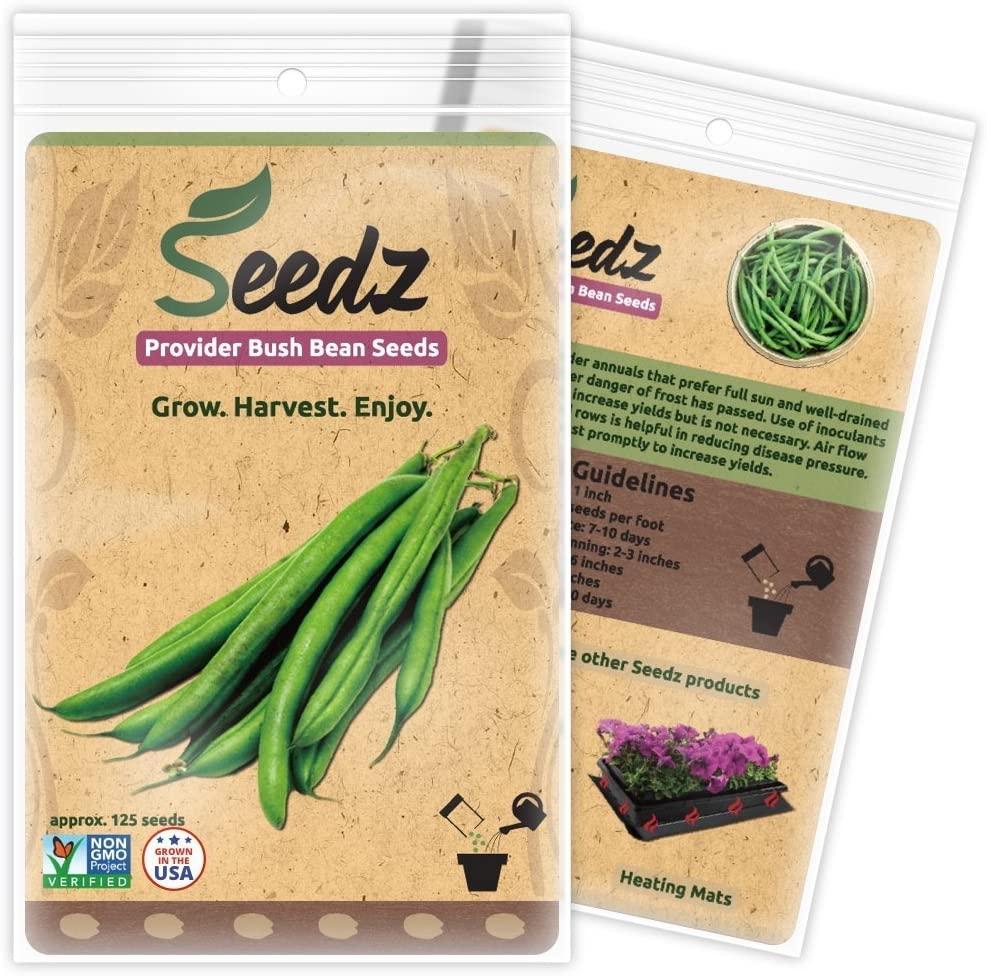 Seedz Organic Green Bean Seeds