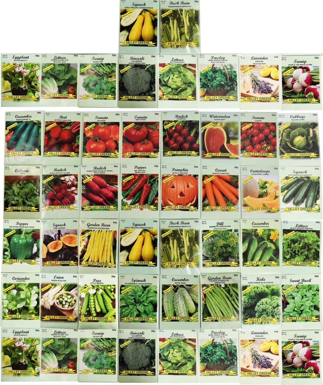 Black Duck 50 Packs Assorted Heirloom Vegetable Seeds