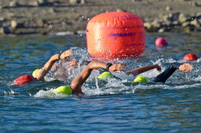 triathalon swimmers