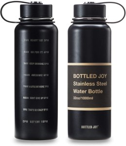 best insulated water bottles joy stainless steel