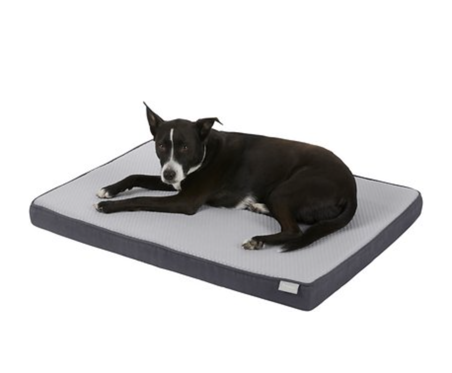 Frisco Cooling Orthopedic Pillow Dog Bed