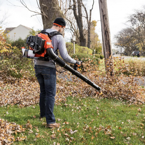 person with backpack leaf blower