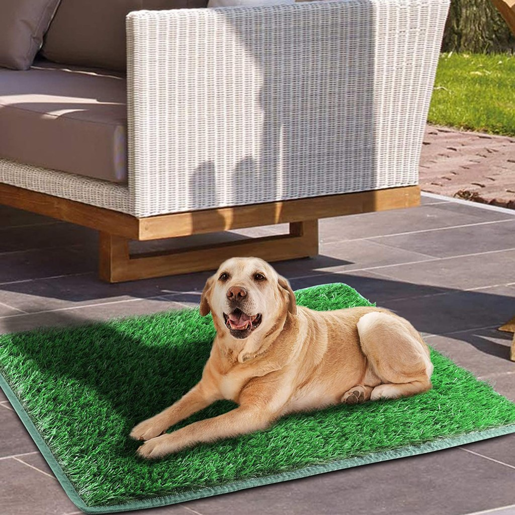 TSIANHUZY Dog Grass Pad