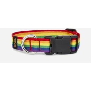 Teva pride collection dog collar