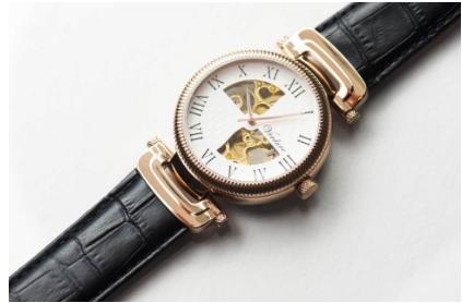 Verdure-Splendor-Automatic-Watch
