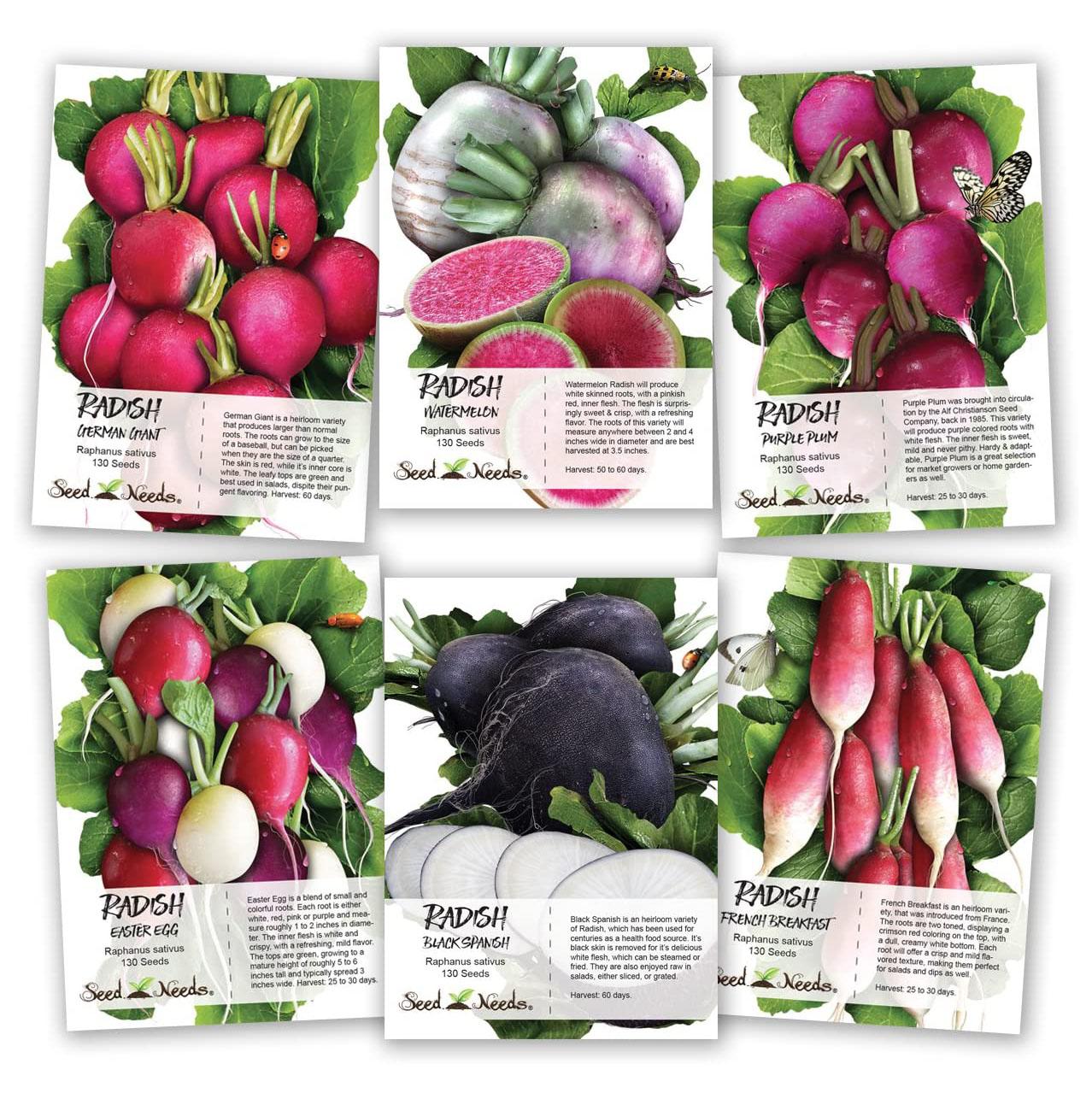 Seed Needs Multicolor Radish Seed Packet