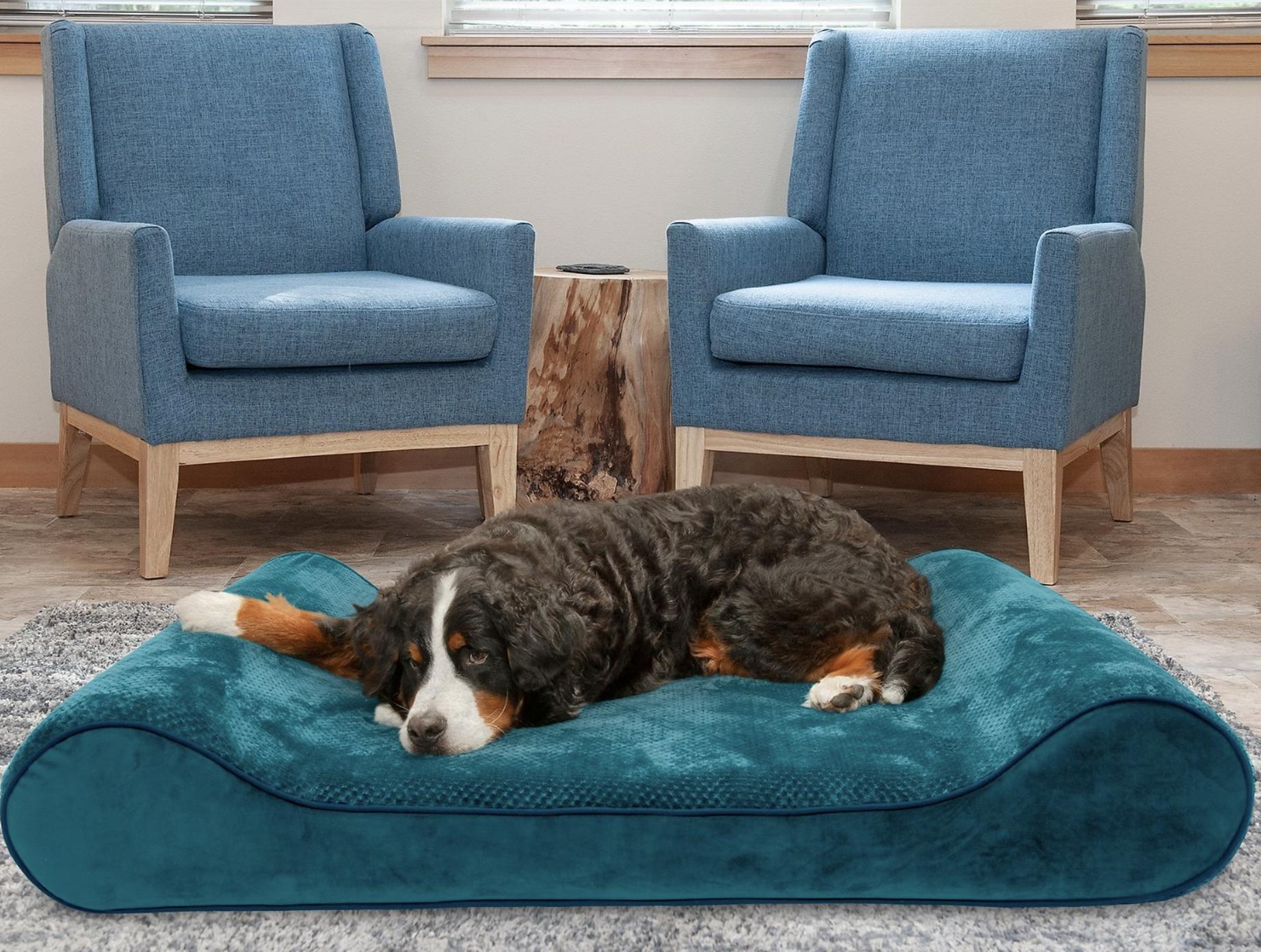 FurHaven Minky Plush & Velvet Luxe Lunger Cooling Gel Dog Bed